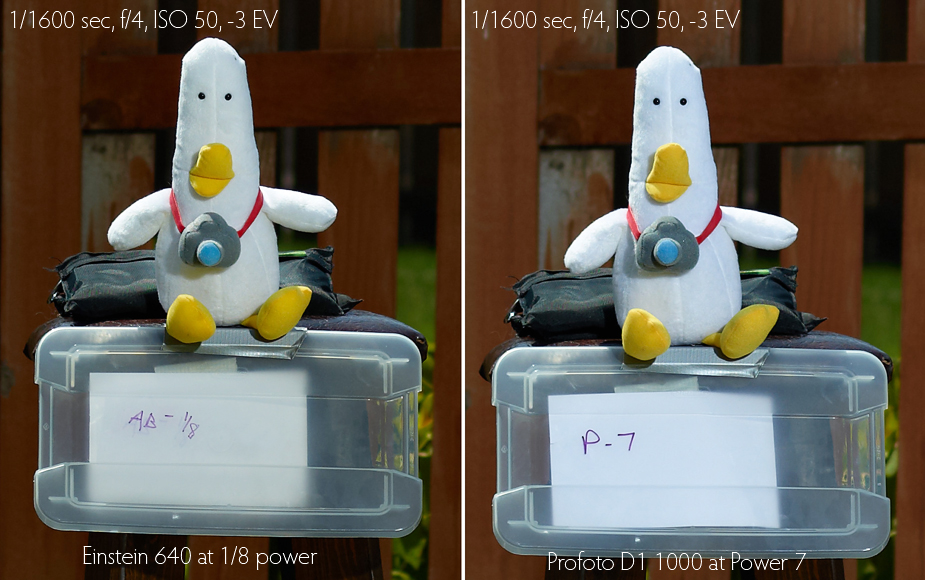 wpid-Einstein-640-review-vs-Profoto-D1-Air-1000-light-quality-test-2012-08-1-14-48.jpg