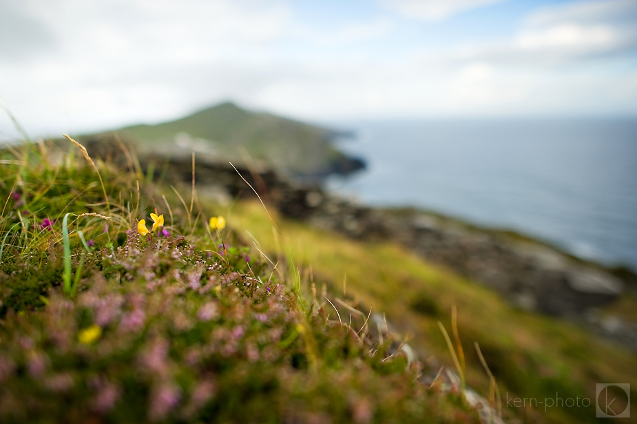 wpid-ireland-landscape-tips-tricks-4-2012-08-10-15-39-2012-12-27-10-42.jpg